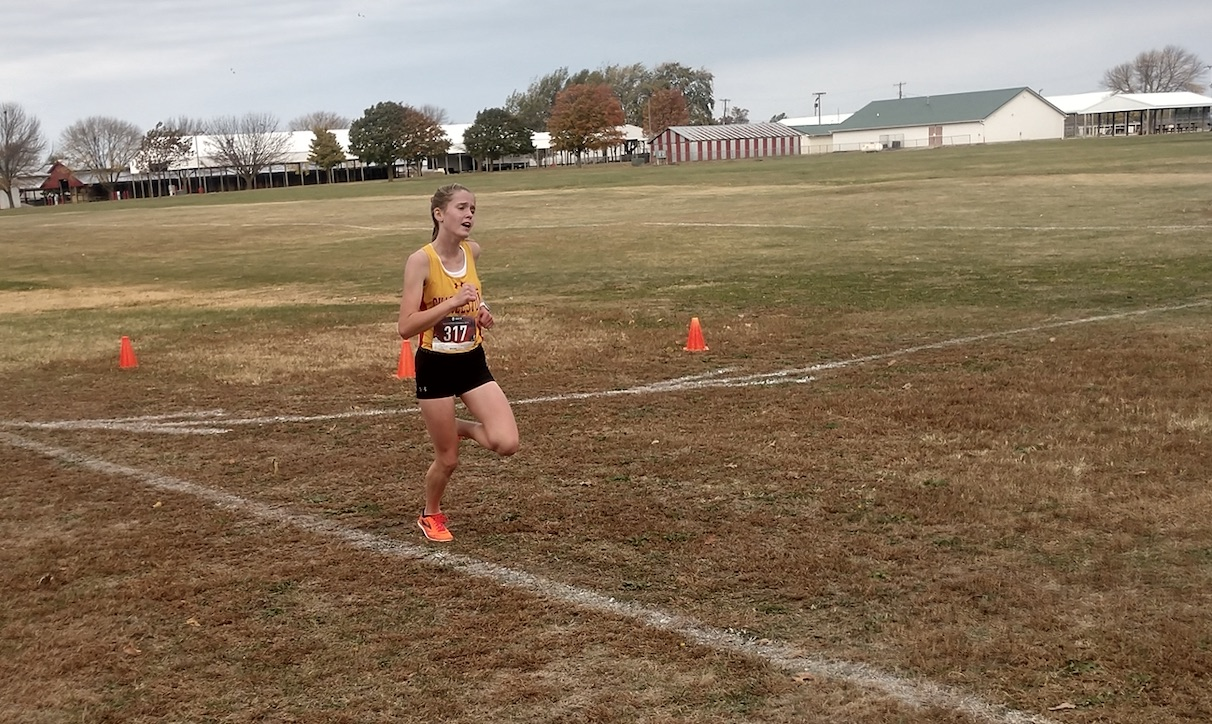 Charleston Middle's Webb wins Class 3A cross country sectional